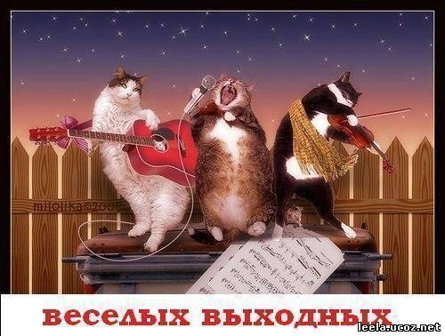 открытки хороших выходных: